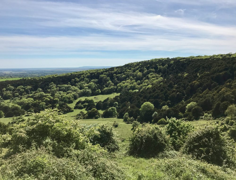 Thinking About – Home and our Connection to the Land