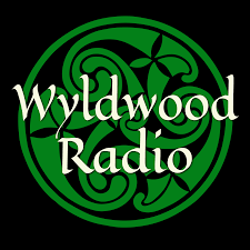 Interview about Y Mabinogi with Wyldwood Radio