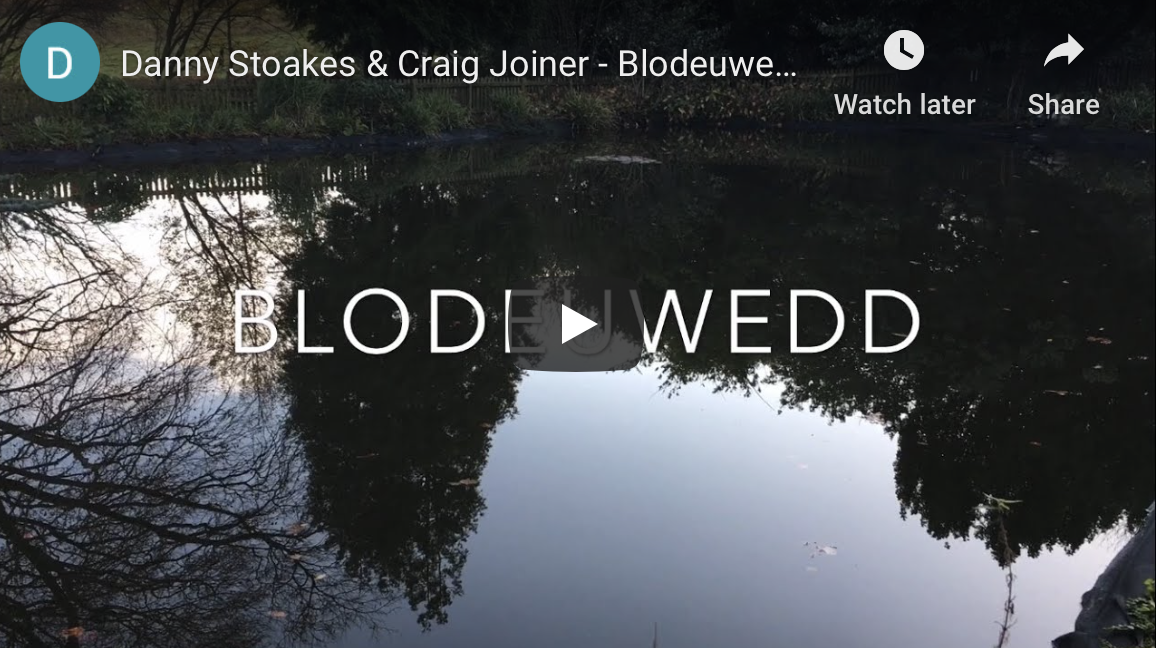 New Charity Album – Blodeuwedd cover version